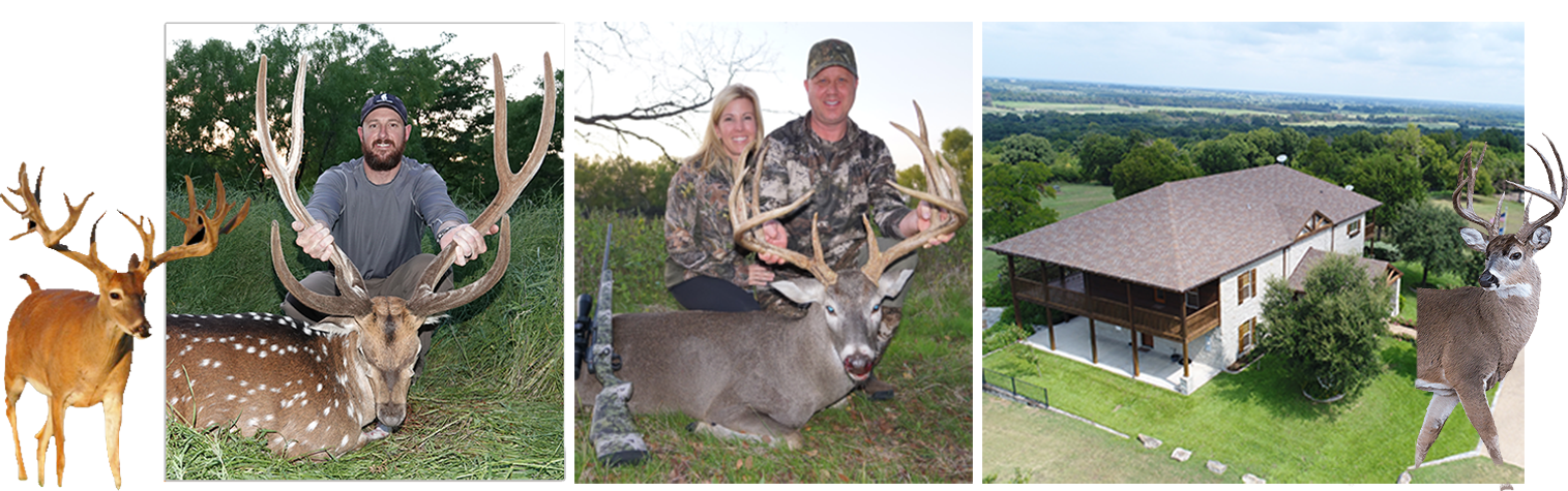 Exciting Exotic Hunting Packages This Season Experience Superior Texas Deer Hunting At Cotton Mesa Trophy Whitetail